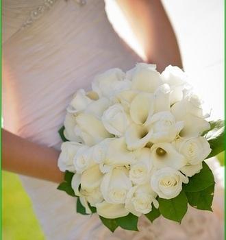 bridal-357500_640.jpg