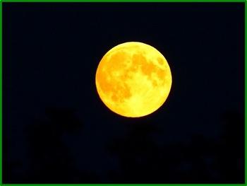 full-moon-865685_640.jpg