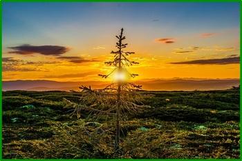 sunset-850877_640.jpg